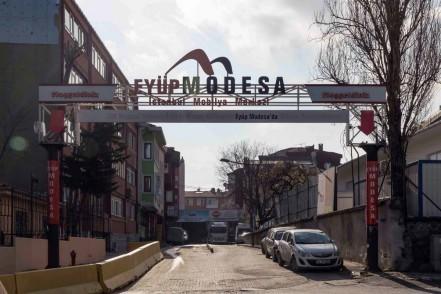 1956'dan beri ağacın yaşam ve şekil bulduğu yer: Modesa