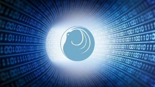 Cumhurbaşkanı Recep Tayyip Erdoğan, siber güvenlik çözümü, Ahtapot, TÜBİTAK
