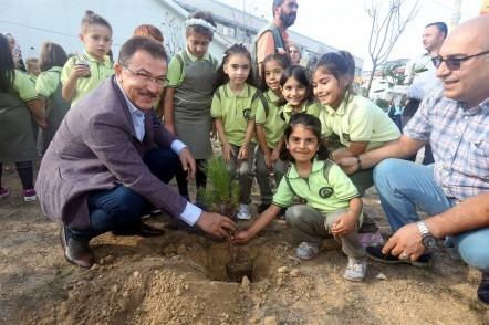 Eyüpsultan Belediye Başkanı Deniz Köken, Şair Nabi İlkokulu, bahçe, fidan