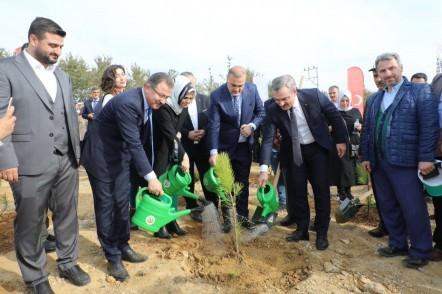 Cumhurbaşkanı Recep Tayyip Erdoğan, Milli Ağaçlandırma Günü, Pirinççi, Geleceğe Nefes