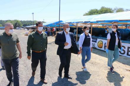 Eyüpsultan'da Kurban Satış ve Kesim Alanları İlaçlanıp, dezenfekte Ediliyor