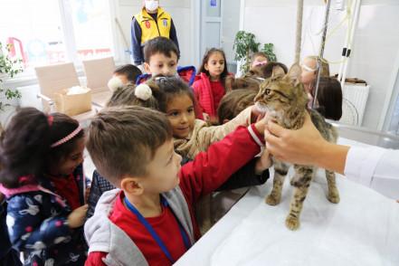 Hayvanları Koruma Günü Eyüpsultan'da unutulmadı