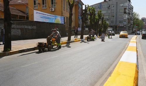 Eyüp'te Cadde ve Sokaklara Bahar Geldi