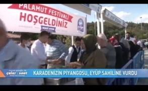 FoxTV - Palamut Eyüp sahiline vurdu